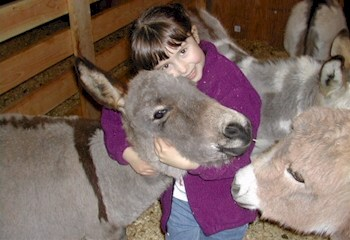 Click here to see a larger view of our little granddaughter hugging one of our little miniature donkeys.