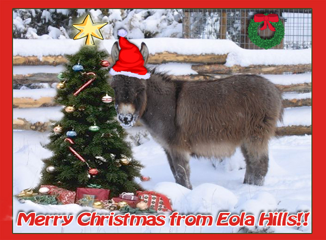 Merry Christmas from Eola Hills!